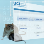 mouse using a computer