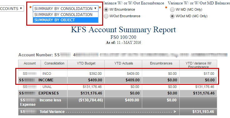 Account Summary Showing Income Variance